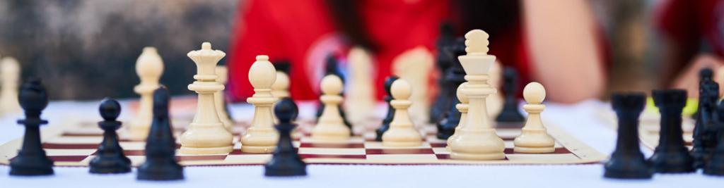 Obrazek: wybór PPK - szachy